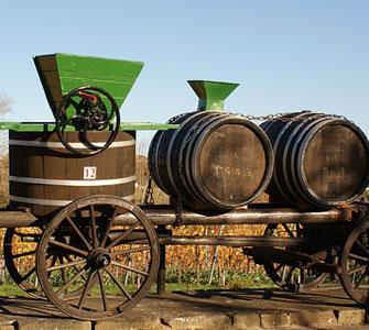 Enoturismo in Portogallo - Musei del Vino